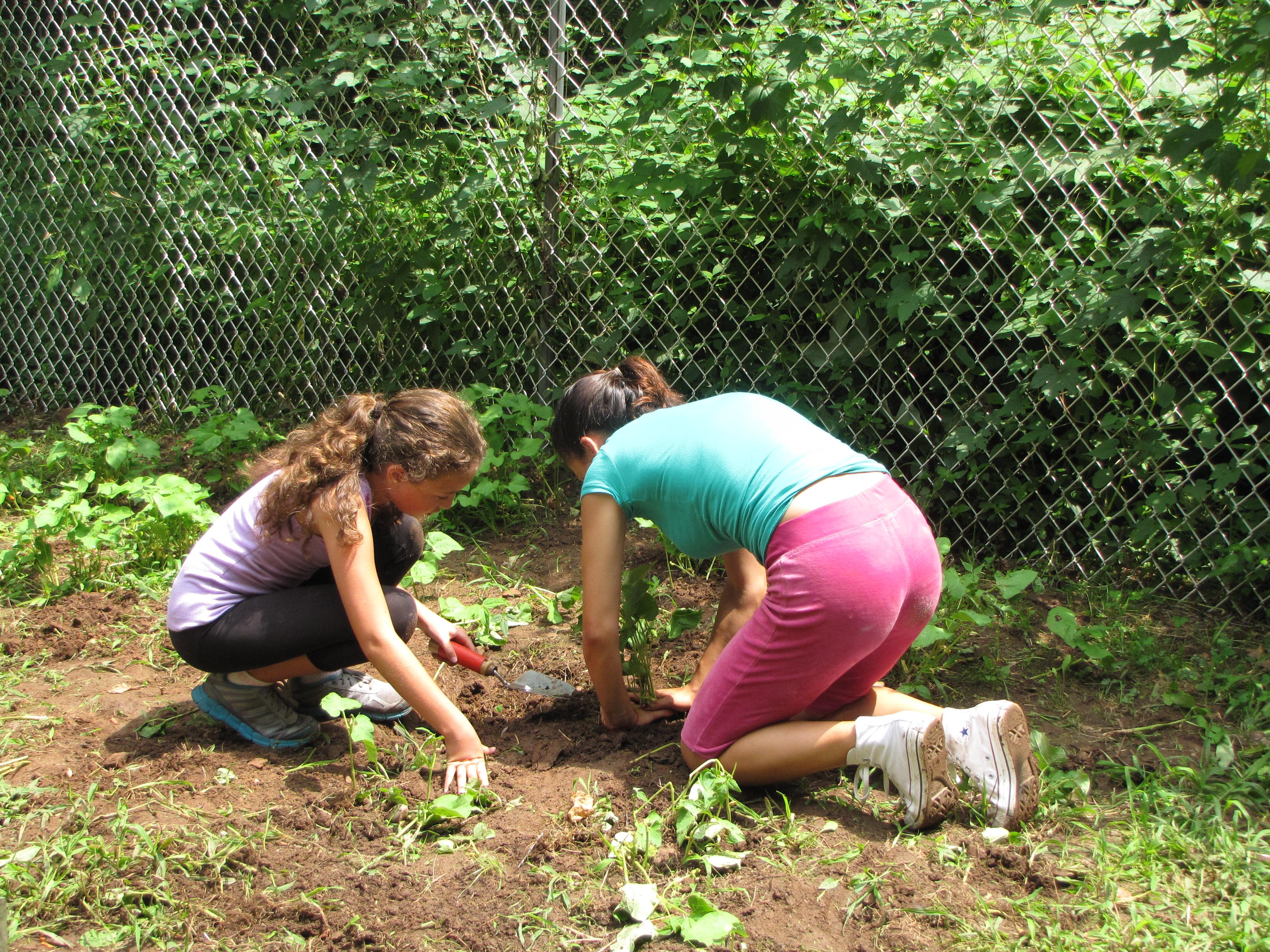 It's hard work making a garden grow!